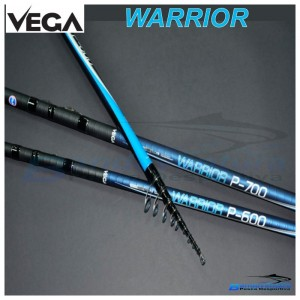 500 Warrior